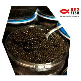 Черная осетровая икра сибирский осетр 500 грамм