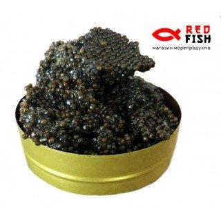 Черная осетровая икра сибирский осетр 250 грамм